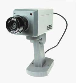 CS - 900 Motion Detector Realistic Looking Camera