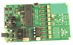 Click for Larger Image - Servo Board